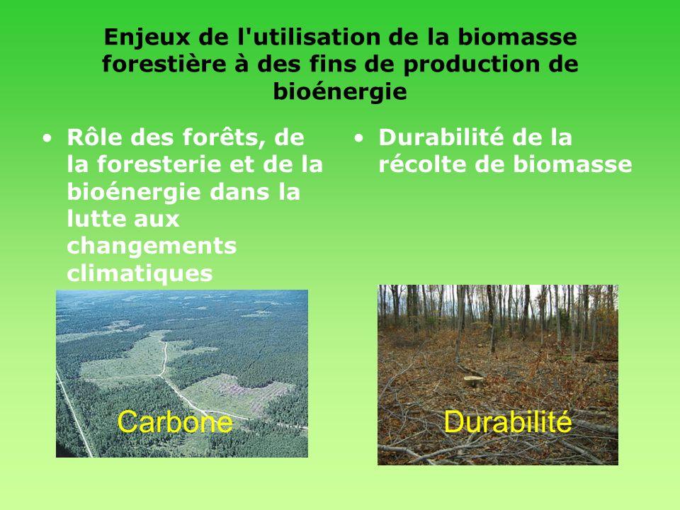Enjeux de l'utilisation de la biomasse forestière à des fins de production de bioénergie Rôle des forêts, de la foresterie et de la bioénergie dans la