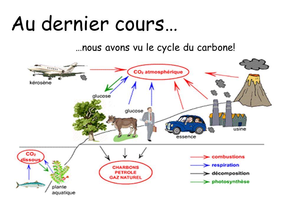 Au dernier cours… …nous avons vu le cycle du carbone!