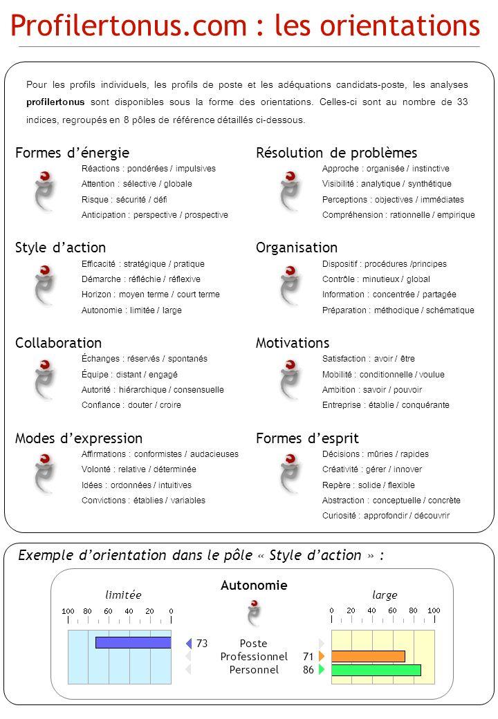 Formes dénergie Réactions : pondérées / impulsives Attention : sélective / globale Risque : sécurité / défi Anticipation : perspective / prospective S