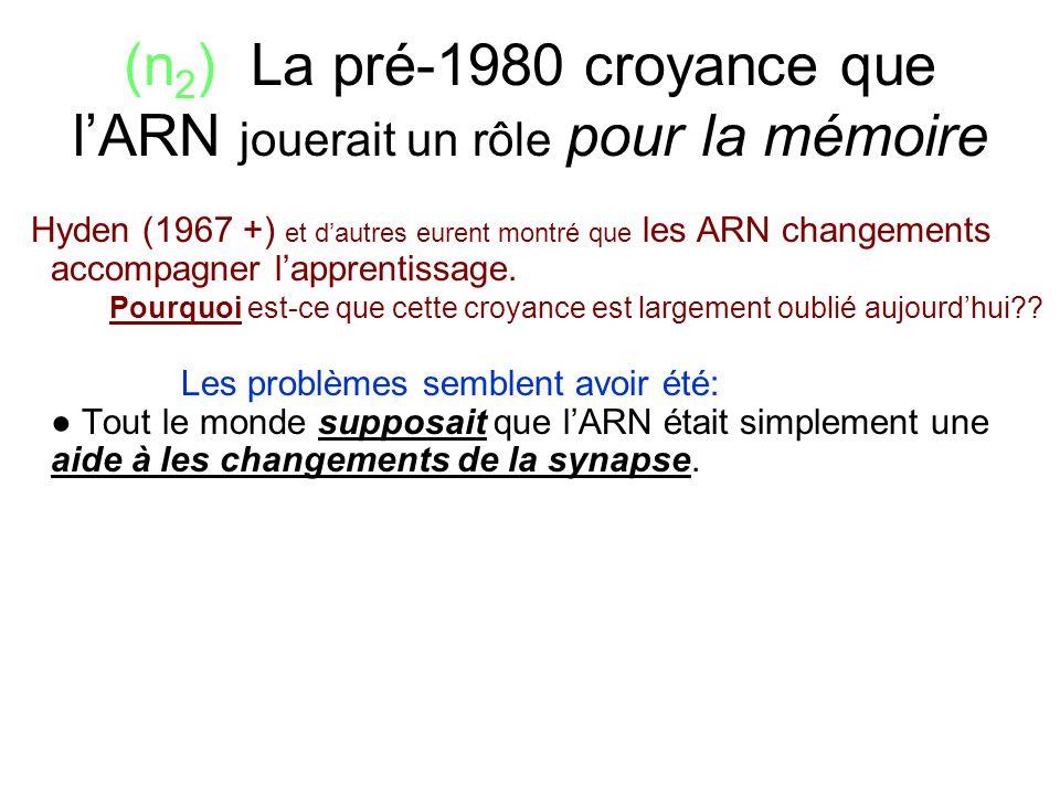 (n 2 ) La pré-1980 croyance que lARN jouerait un rôle pour la mémoire Hyden (1967 +) et dautres eurent montré que les ARN changements accompagner lapp