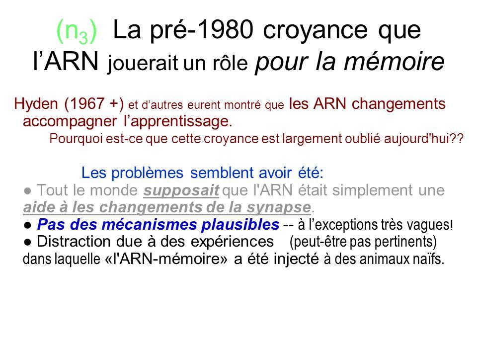 (n 3 ) La pré-1980 croyance que lARN jouerait un rôle pour la mémoire Hyden (1967 +) et dautres eurent montré que les ARN changements accompagner lapp