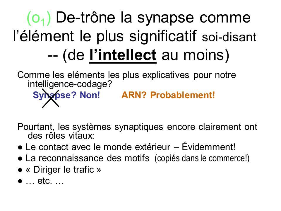 (o 1 ) De-trône la synapse comme lélément le plus significatif soi-disant - -- (de lintellect au moins) Comme les eléments les plus explicatives pour