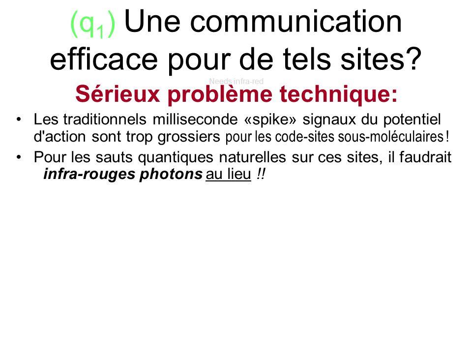 (q 1 ) Une communication efficace pour de tels sites? Needs infra-red Sérieux problème technique: Les traditionnels milliseconde «spike» signaux du po