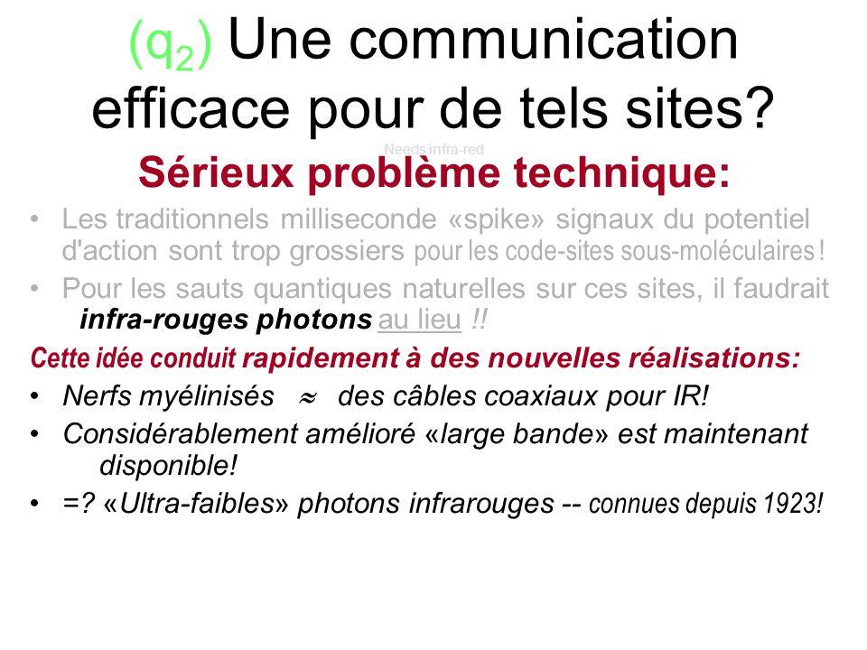 (q 2 ) Une communication efficace pour de tels sites? Needs infra-red Sérieux problème technique: Les traditionnels milliseconde «spike» signaux du po