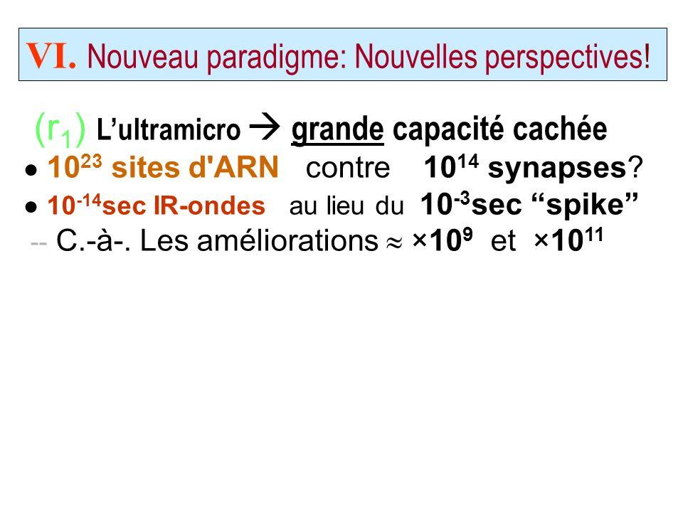 (r 1 ) Lultramicro grande capacité cachée 10 23 sites d'ARN contre 10 14 synapses? 10 -14 sec IR-ondes au lieu du 10 -3 sec spike -- C.-à-. Les amélio