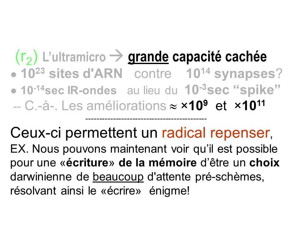 (r 2 ) Lultramicro grande capacité cachée 10 23 sites d'ARN contre 10 14 synapses? 10 -14 sec IR-ondes au lieu du 10 -3 sec spike -- C.-à-. Les amélio