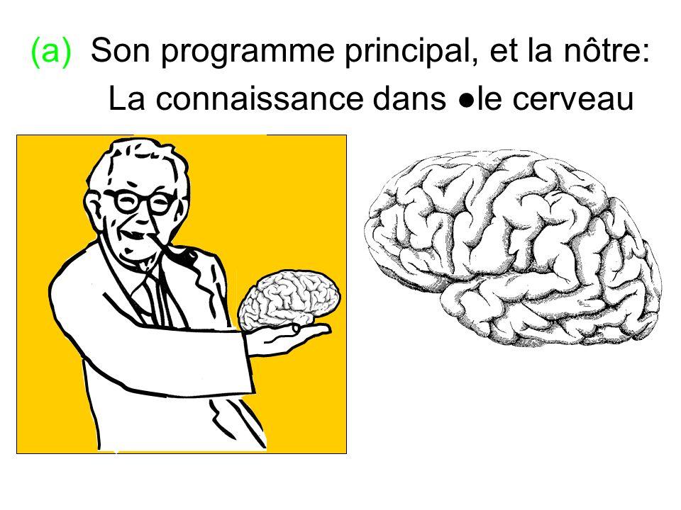 (a) Son programme principal, et la nôtre: La connaissance dans le cerveau