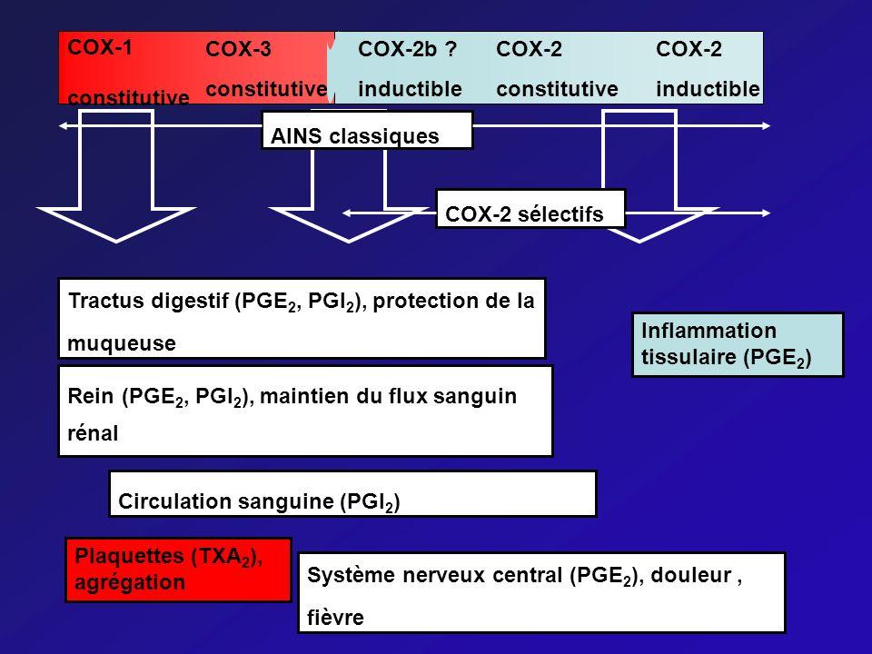 COX-1 constitutive COX-3 constitutive COX-2b ? inductible COX-2 constitutive COX-2 inductible AINS classiquesCOX-2 sélectifs Tractus digestif (PGE 2,