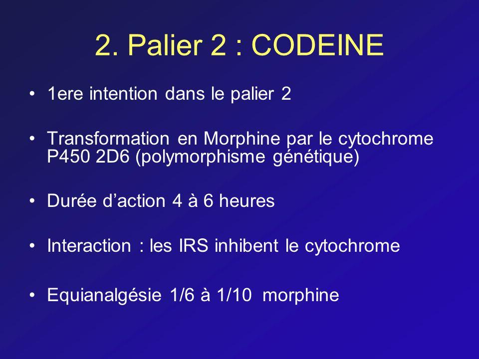 2. Palier 2 : CODEINE 1ere intention dans le palier 2 Transformation en Morphine par le cytochrome P450 2D6 (polymorphisme génétique) Durée daction 4