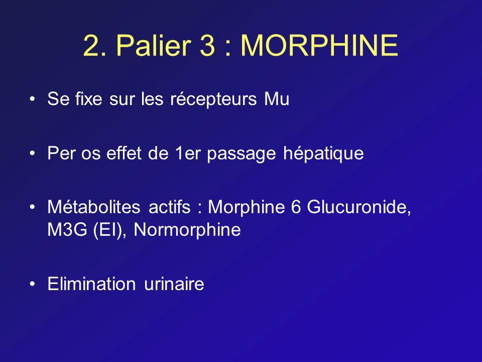 2. Palier 3 : MORPHINE Se fixe sur les récepteurs Mu Per os effet de 1er passage hépatique Métabolites actifs : Morphine 6 Glucuronide, M3G (EI), Norm