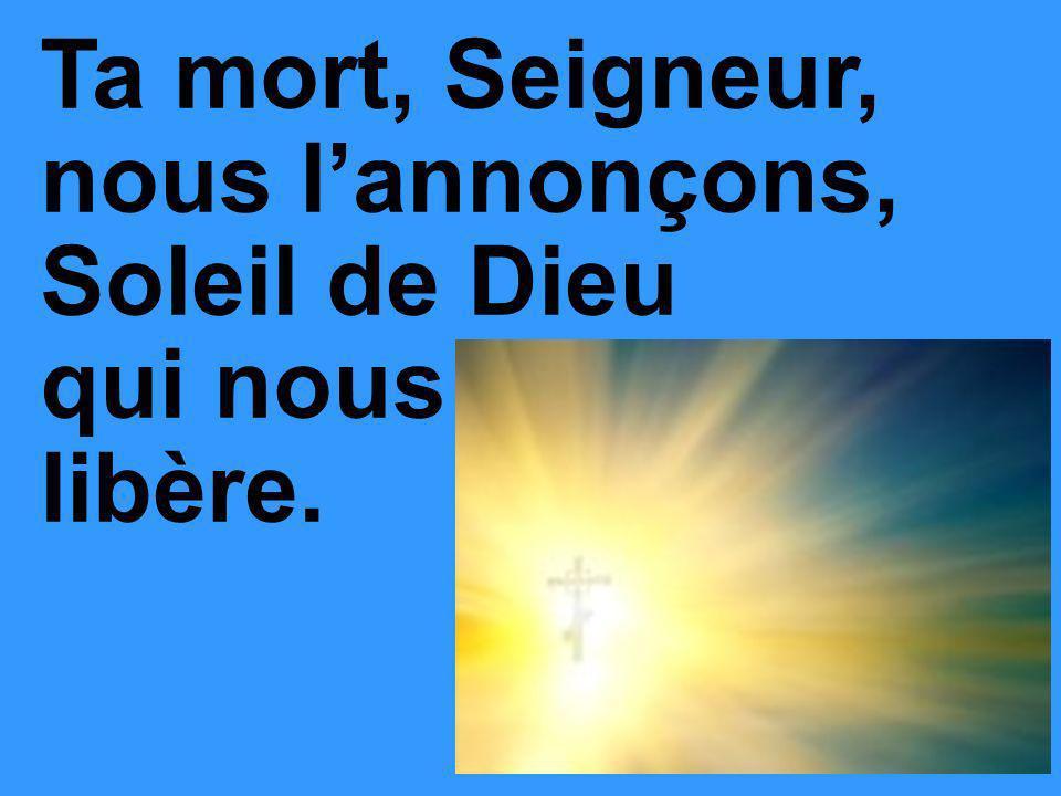 Ta mort, Seigneur, nous lannonçons, Soleil de Dieu qui nous libère.