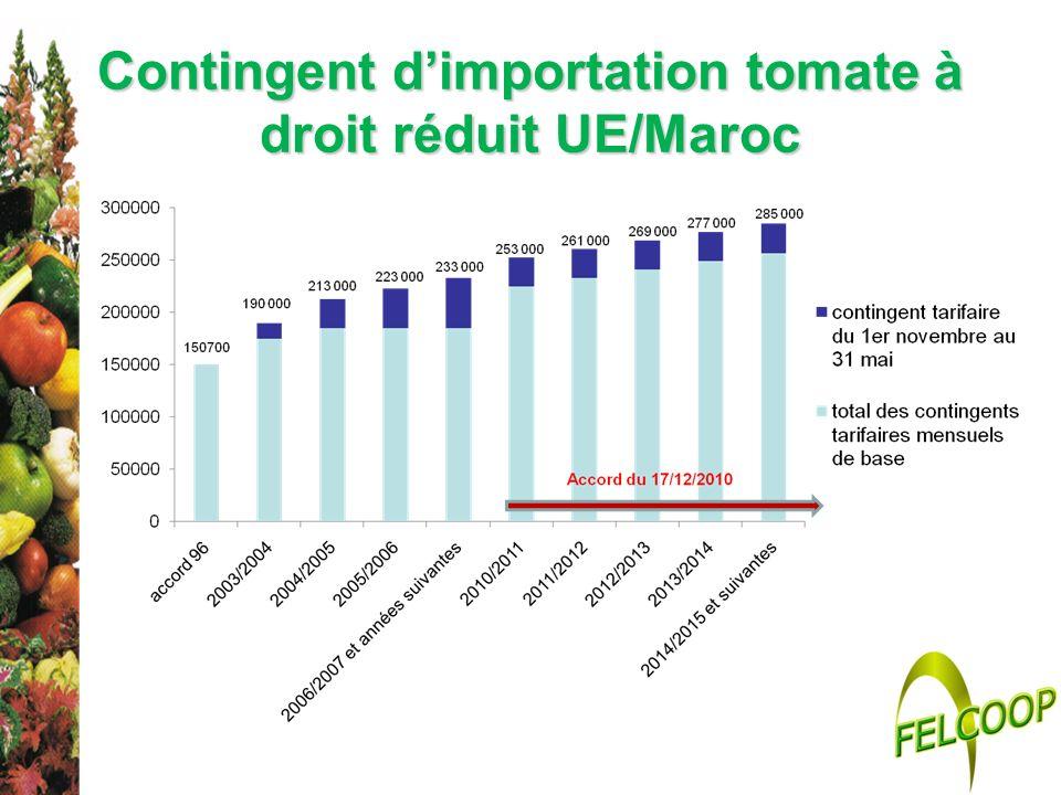 Contingent dimportation tomate à droit réduit UE/Maroc