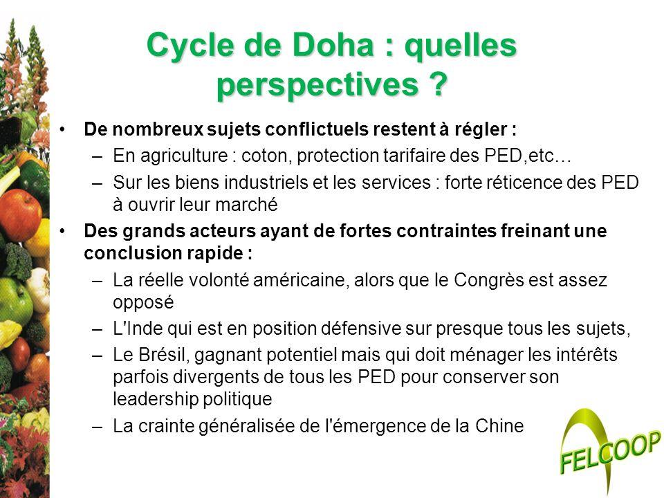 Cycle de Doha : quelles perspectives ? De nombreux sujets conflictuels restent à régler : –En agriculture : coton, protection tarifaire des PED,etc… –