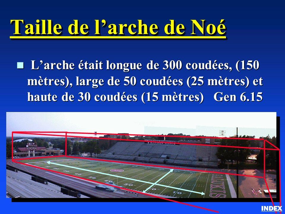 Taille de larche de Noé n Larche était longue de 300 coudées, (150 mètres), large de 50 coudées (25 mètres) et haute de 30 coudées (15 mètres) Gen 6.1