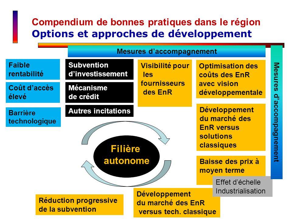 Compendium de bonnes pratiques dans le région Options et approches de développement Faible rentabilité Coût daccès élevé Subvention dinvestissement Vi