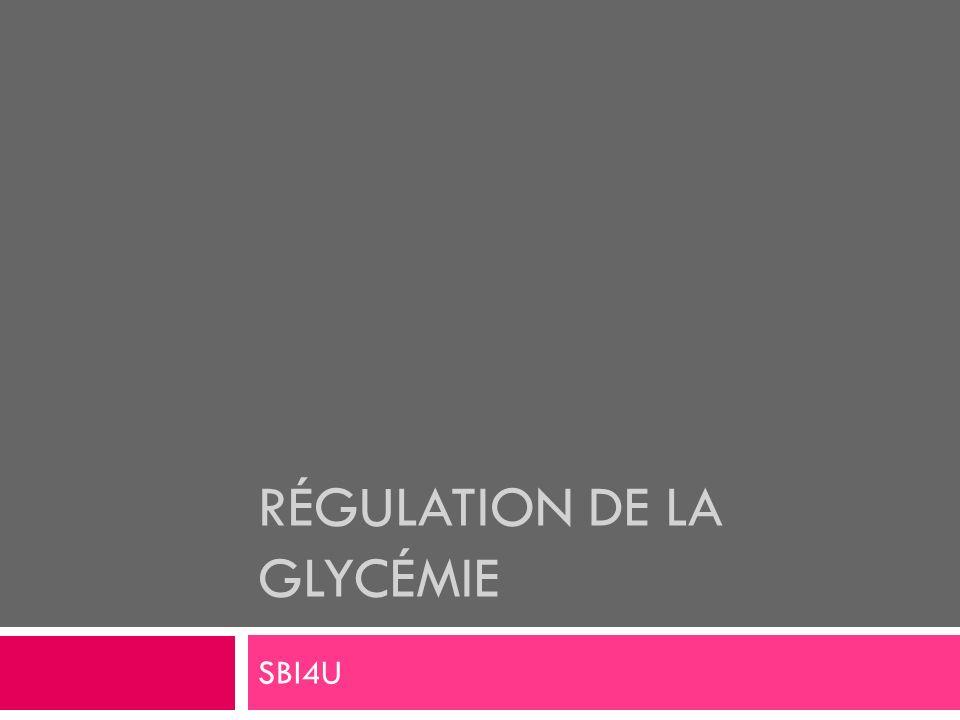 RÉGULATION DE LA GLYCÉMIE SBI4U