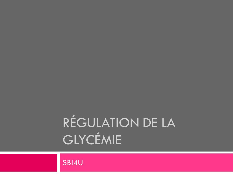 Pancréas Exocrine : enz. digestives Endocrine : glucagon et insuline