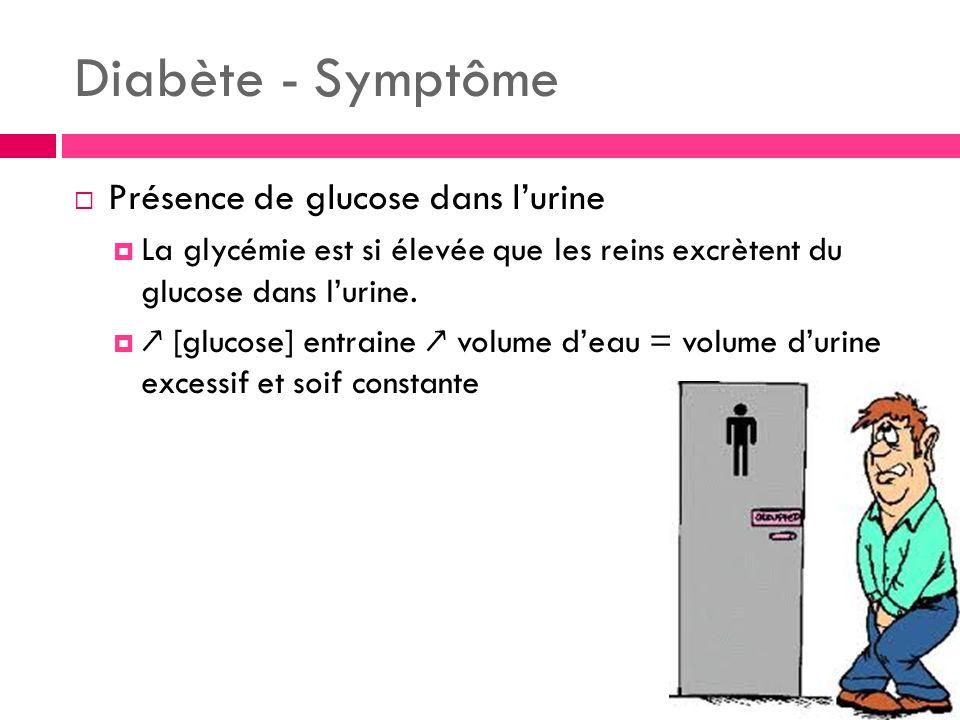 Diabète - Symptôme Présence de glucose dans lurine La glycémie est si élevée que les reins excrètent du glucose dans lurine. [glucose] entraine volume