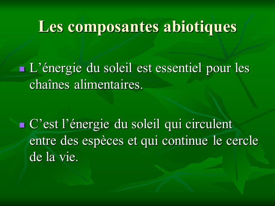 Les composantes abiotiques Lénergie du soleil est essentiel pour les chaînes alimentaires. Lénergie du soleil est essentiel pour les chaînes alimentai