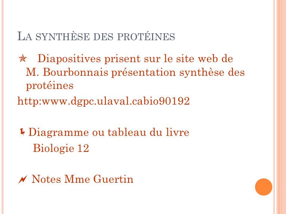 L A SYNTHÈSE DES PROTÉINES Diapositives prisent sur le site web de M. Bourbonnais présentation synthèse des protéines http:www.dgpc.ulaval.cabio90192