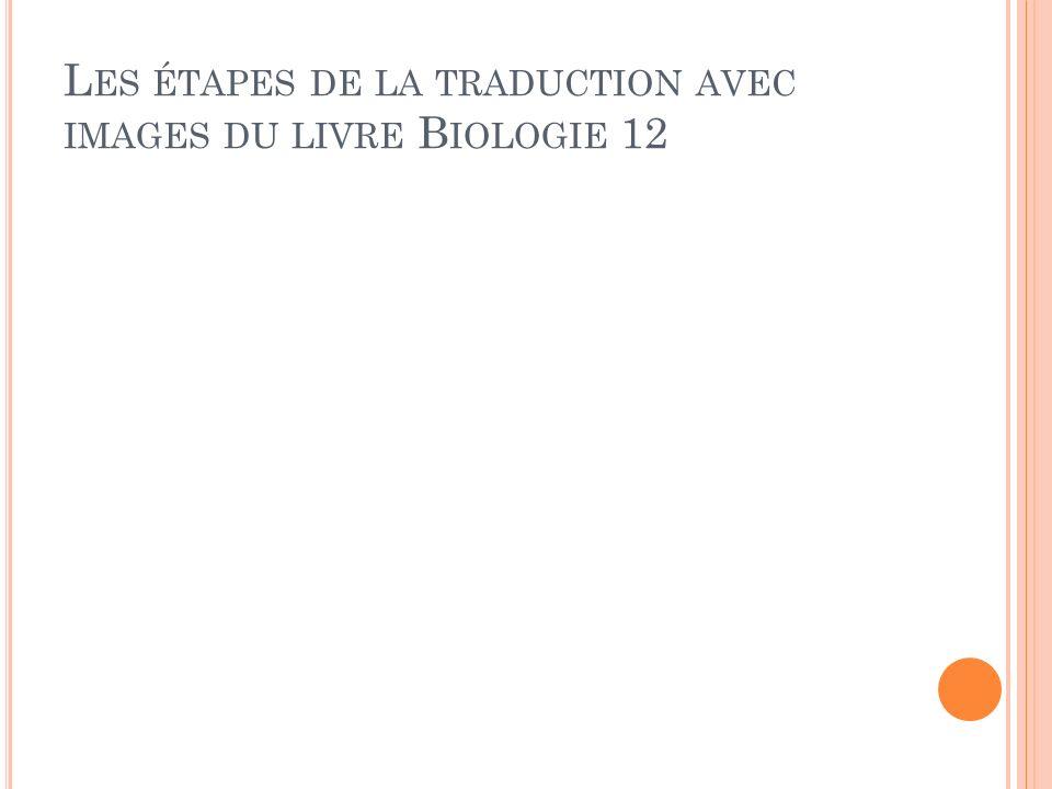 L ES ÉTAPES DE LA TRADUCTION AVEC IMAGES DU LIVRE B IOLOGIE 12