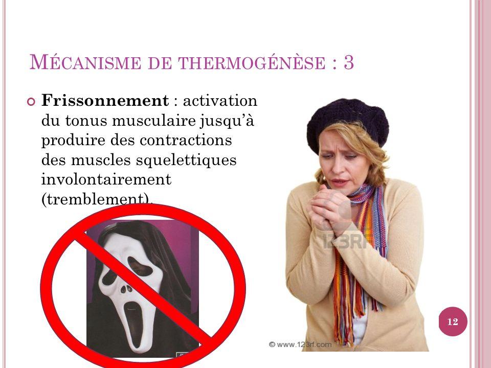 M ÉCANISME DE THERMOGÉNÈSE : 3 Frissonnement : activation du tonus musculaire jusquà produire des contractions des muscles squelettiques involontairem