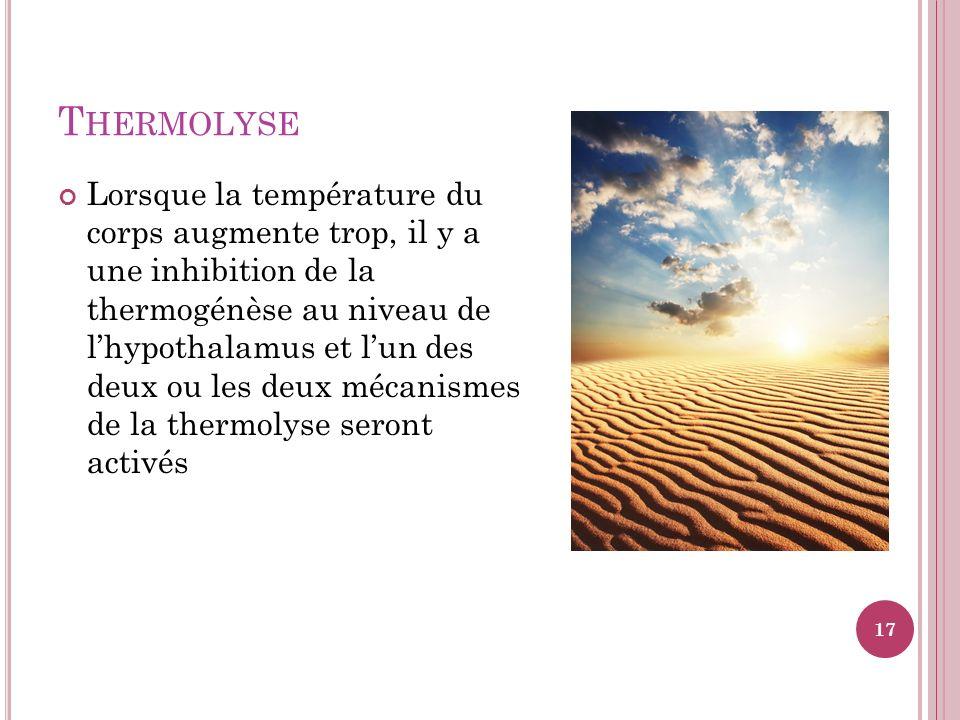 T HERMOLYSE Lorsque la température du corps augmente trop, il y a une inhibition de la thermogénèse au niveau de lhypothalamus et lun des deux ou les