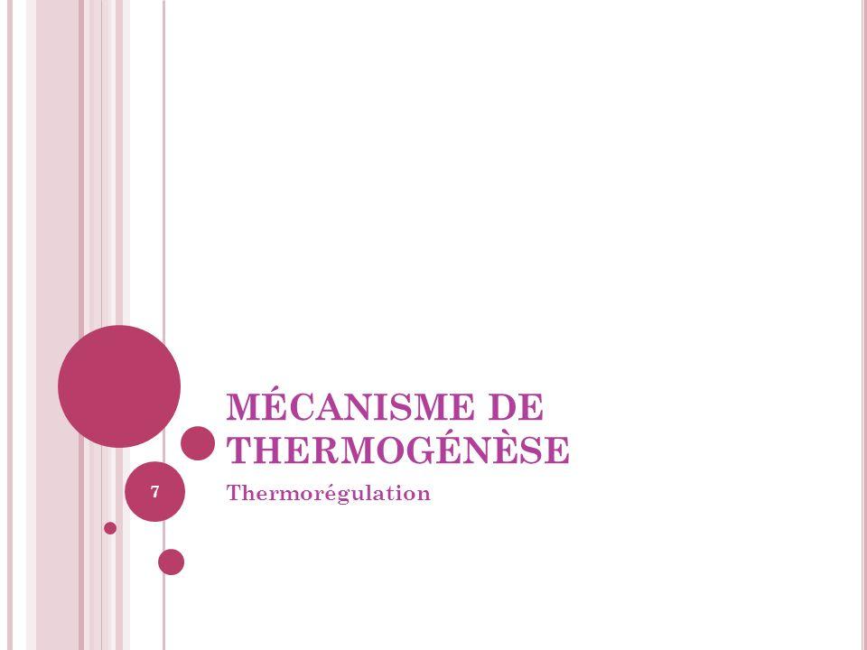 MÉCANISME DE THERMOGÉNÈSE Thermorégulation 7