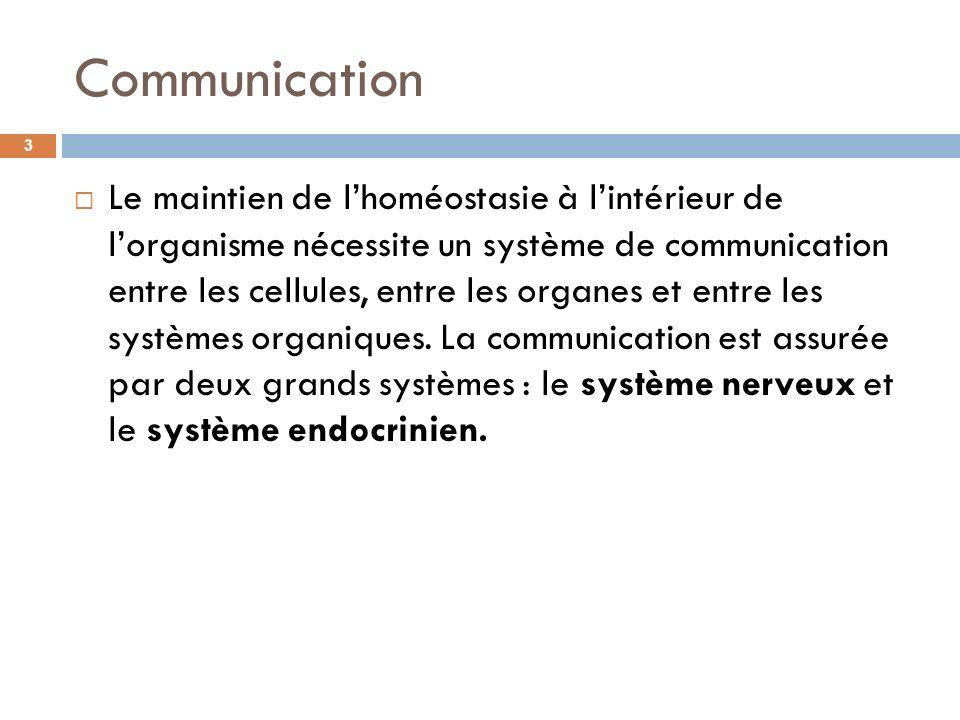 Communication Le maintien de lhoméostasie à lintérieur de lorganisme nécessite un système de communication entre les cellules, entre les organes et en