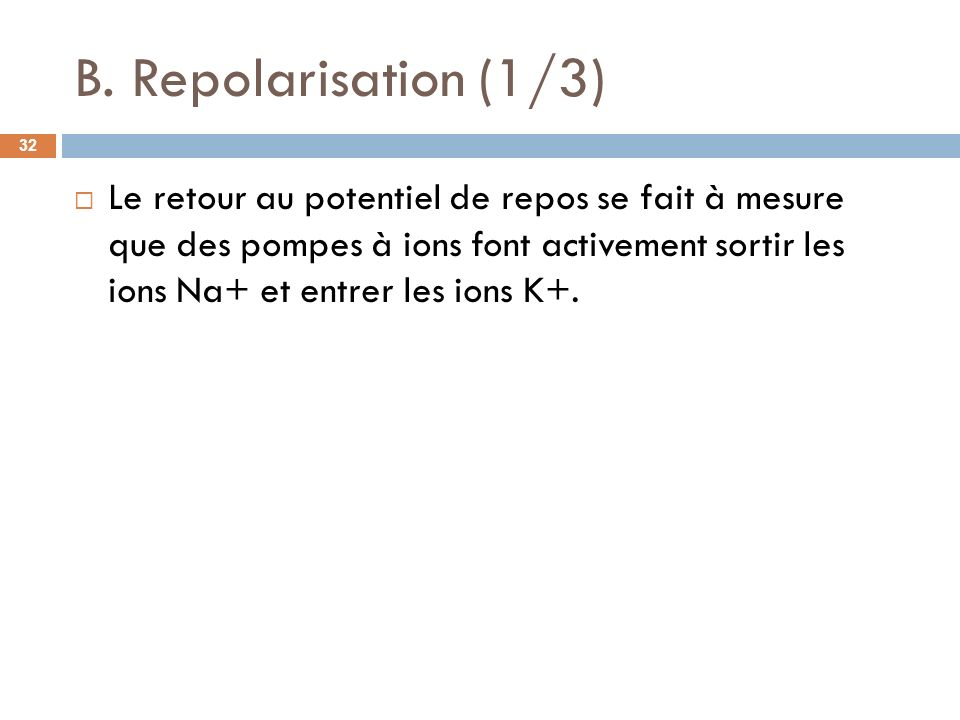 B. Repolarisation (1/3) Le retour au potentiel de repos se fait à mesure que des pompes à ions font activement sortir les ions Na+ et entrer les ions