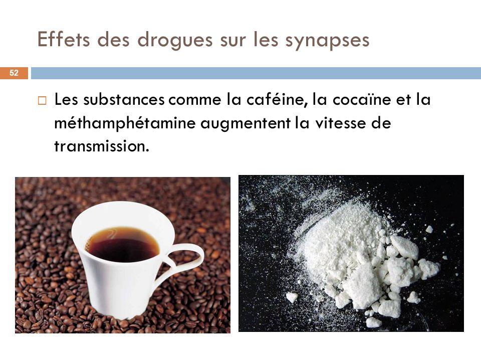 Effets des drogues sur les synapses Les substances comme la caféine, la cocaïne et la méthamphétamine augmentent la vitesse de transmission. 52