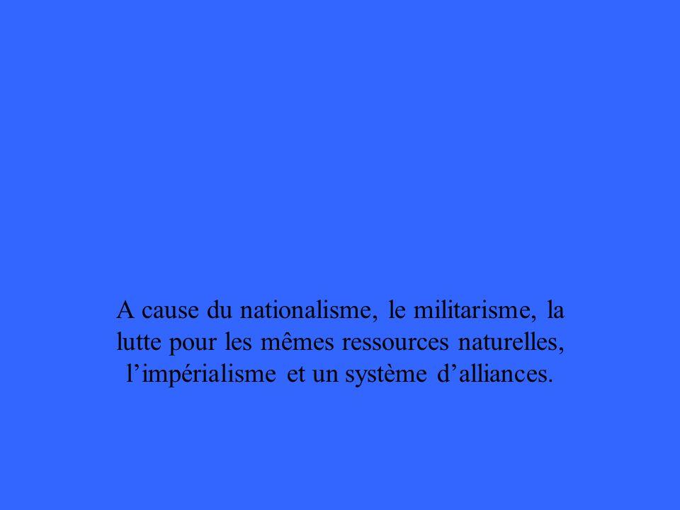 A cause du nationalisme, le militarisme, la lutte pour les mêmes ressources naturelles, limpérialisme et un système dalliances.