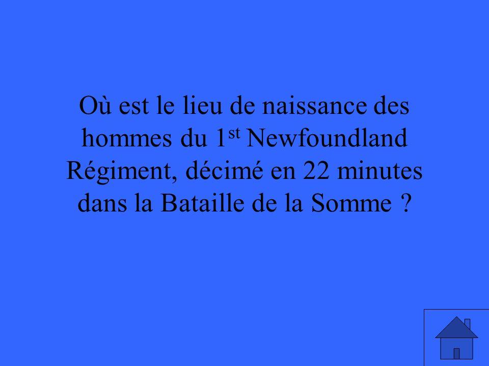 Où est le lieu de naissance des hommes du 1 st Newfoundland Régiment, décimé en 22 minutes dans la Bataille de la Somme