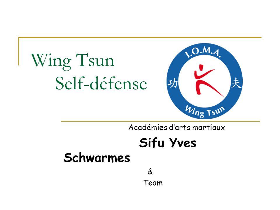International Organisation of Martial Arts Académies dArts martiaux Sifu Yves Schwarmes & Team Tel: + 352 621 169 810 wtlux@pt.lu www.wtlux.comwtlux@pt.lu