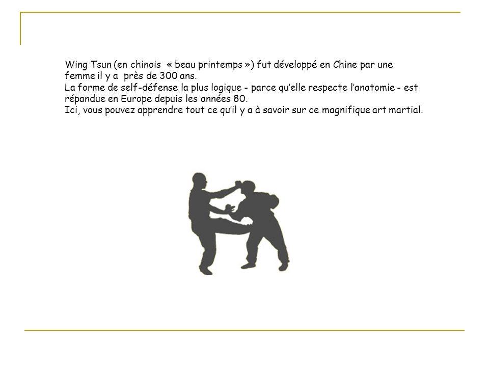 Le Wing Tsun est une évolution de soi.Il est enseigné en groupe mais de façon individuelle.