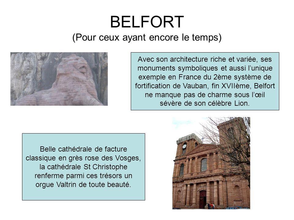 BELFORT (Pour ceux ayant encore le temps) Belle cathédrale de facture classique en grès rose des Vosges, la cathédrale St Christophe renferme parmi ce