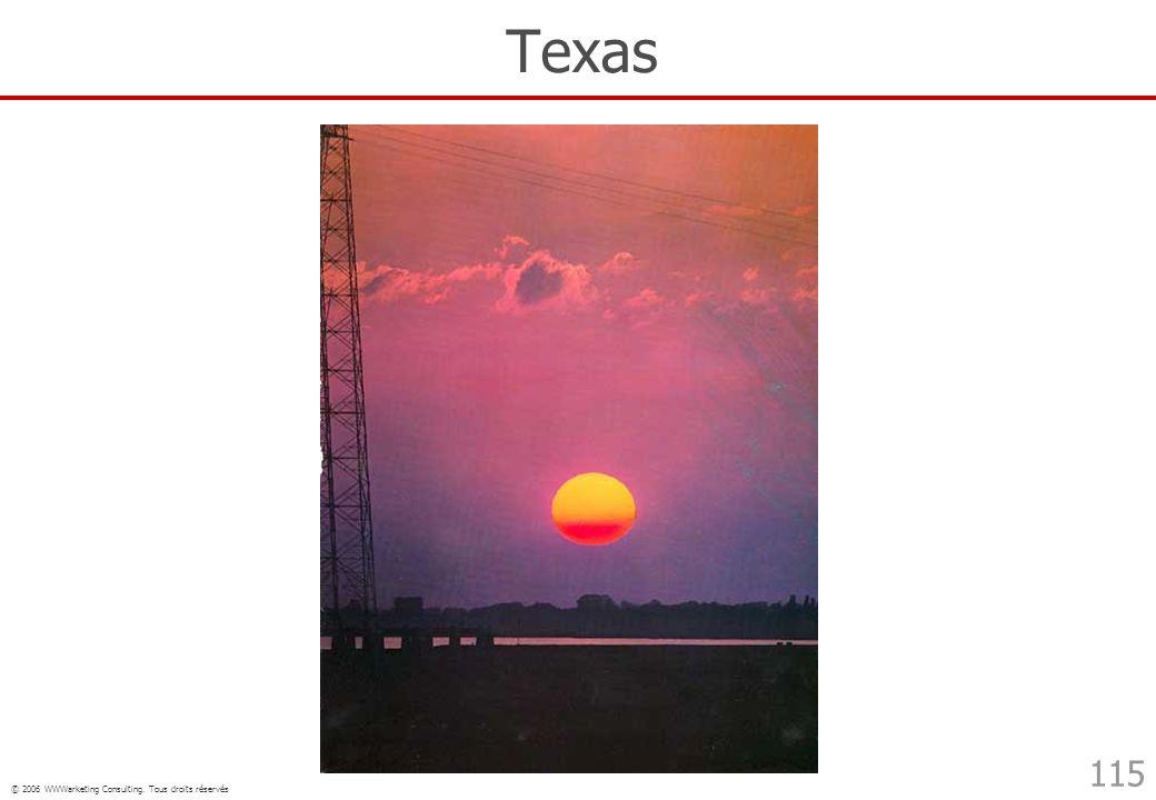 © 2006 WWWarketing Consulting. Tous droits réservés 115 Texas