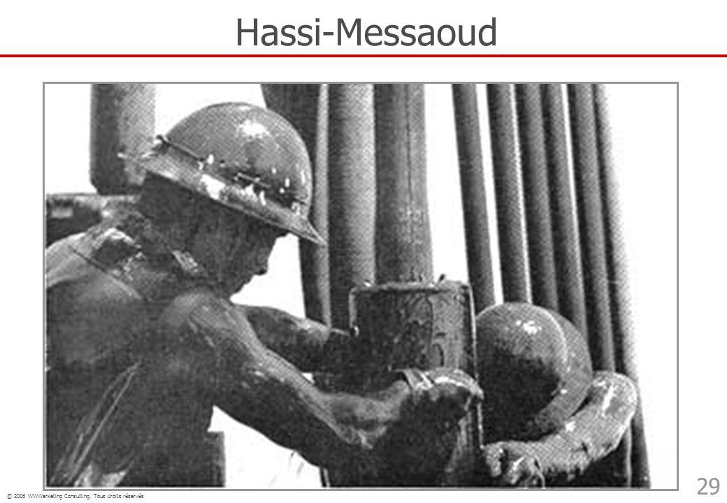 © 2006 WWWarketing Consulting. Tous droits réservés 29 Hassi-Messaoud