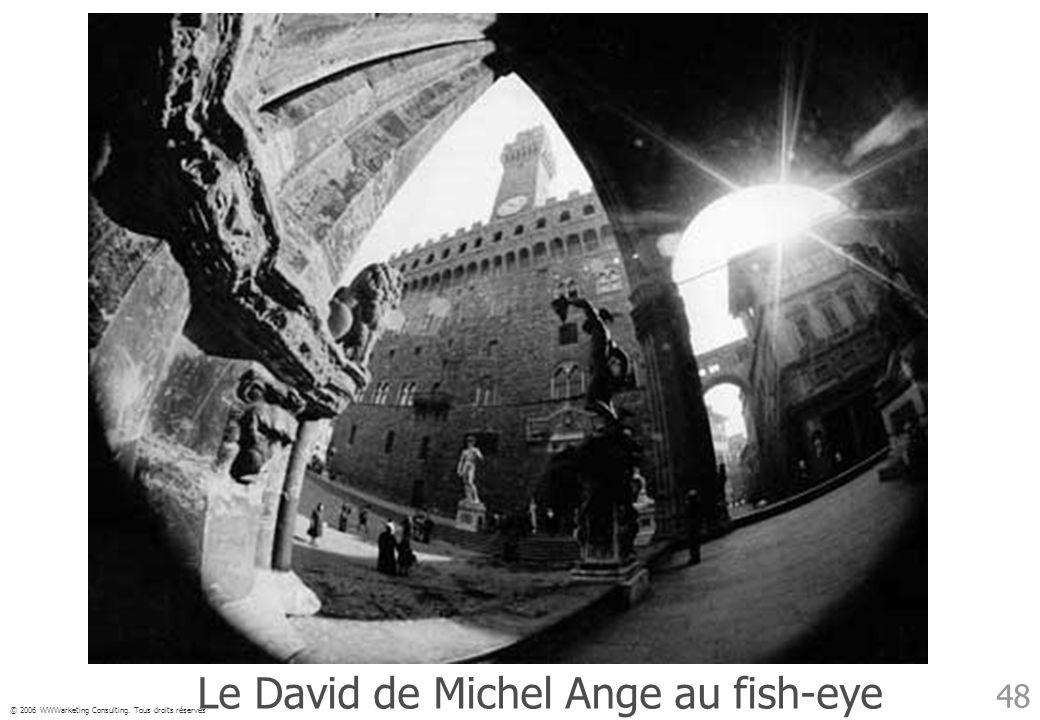© 2006 WWWarketing Consulting. Tous droits réservés 48 Le David de Michel Ange au fish-eye