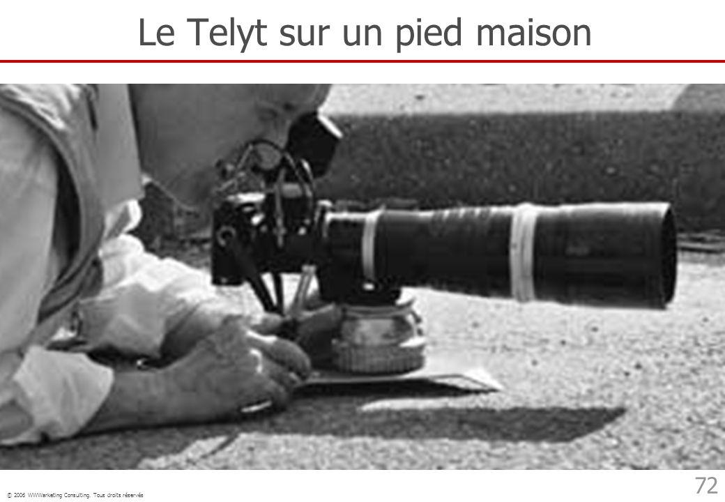© 2006 WWWarketing Consulting. Tous droits réservés 72 Le Telyt sur un pied maison