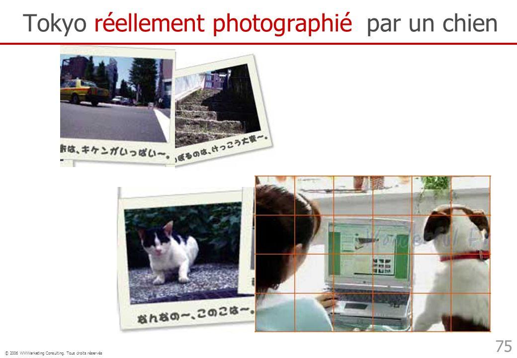 © 2006 WWWarketing Consulting. Tous droits réservés 75 Tokyo réellement photographié par un chien