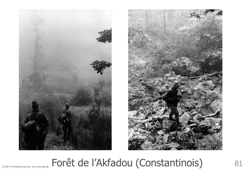 © 2006 WWWarketing Consulting. Tous droits réservés 81 Forêt de lAkfadou (Constantinois)