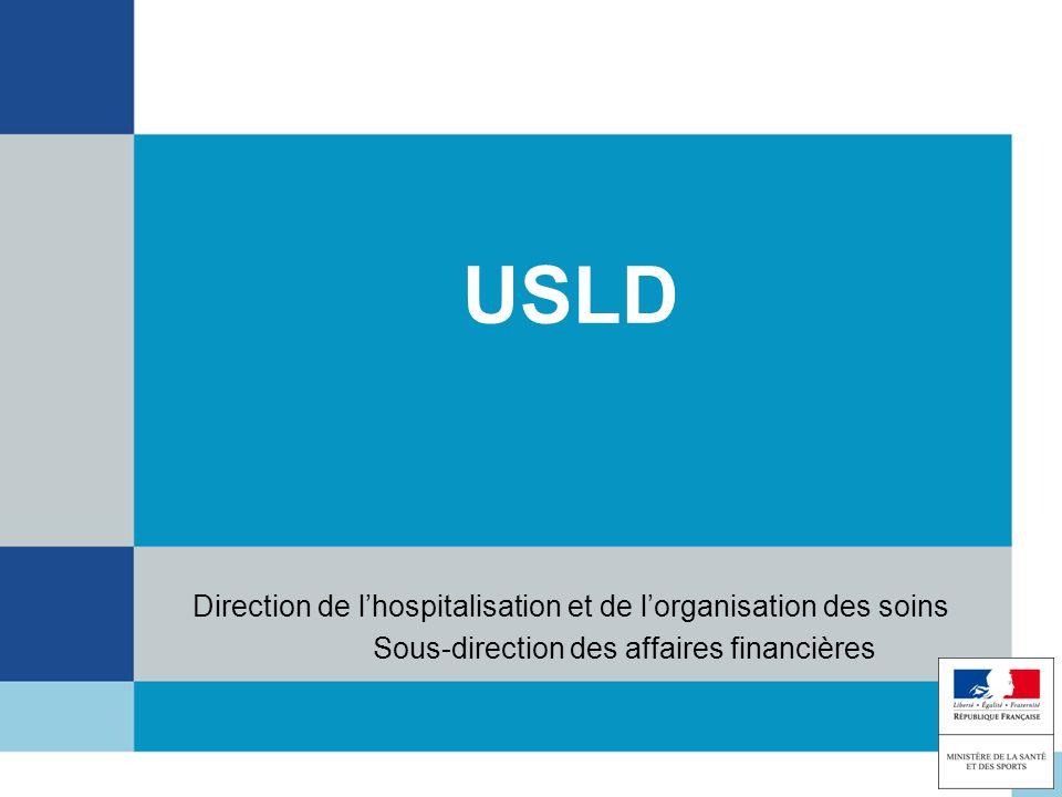 USLD Direction de lhospitalisation et de lorganisation des soins Sous-direction des affaires financières