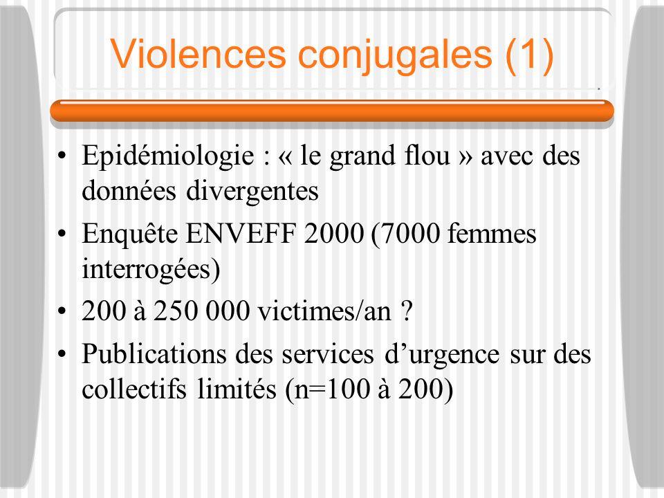 Violences conjugales (2) « Les violences faites aux femmes » (INSEE première février 2008) 10 000 ménages et individus interrogés Violences subies en 2005-2006 dans et hors du ménage, Sujets 18-59 ans, 3% des femmes ont subi des violences physiques de la part dun membre du ménage contre 1,6% des hommes Violences verbales les plus fréquentes Violences sexuelles les moins fréquentes Violences psychologiques répétées