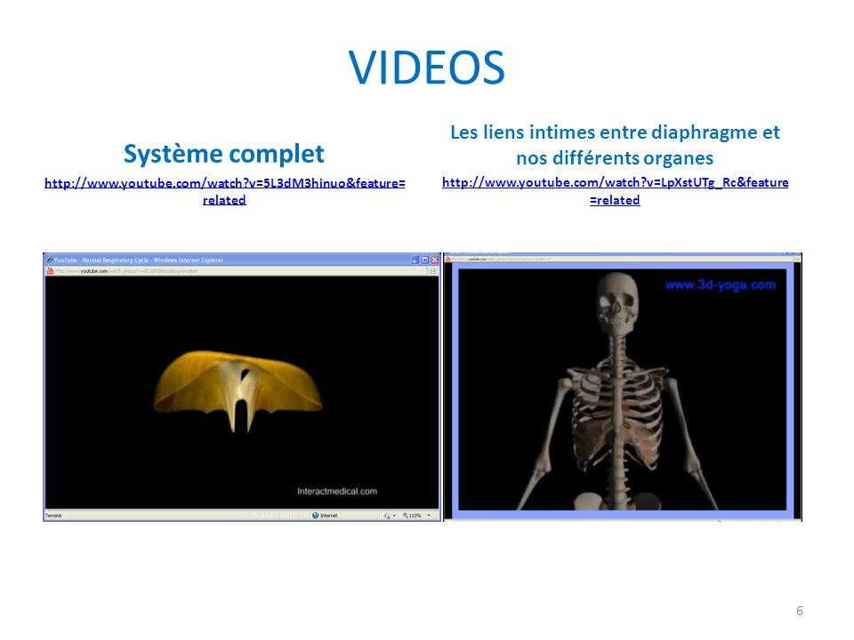 Liens entre les côtes et le diaphragme http://www.youtube.com/watch?v=hp-gCvW8PRY&feature=related 7