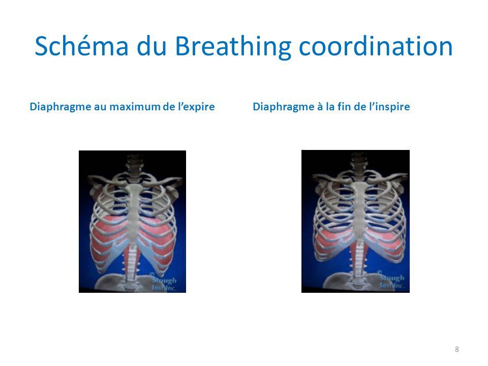 Les Abdominaux1 (planches extraites du livre de Blandine Calais-Germain: Anatomie pour le mouvement ed.