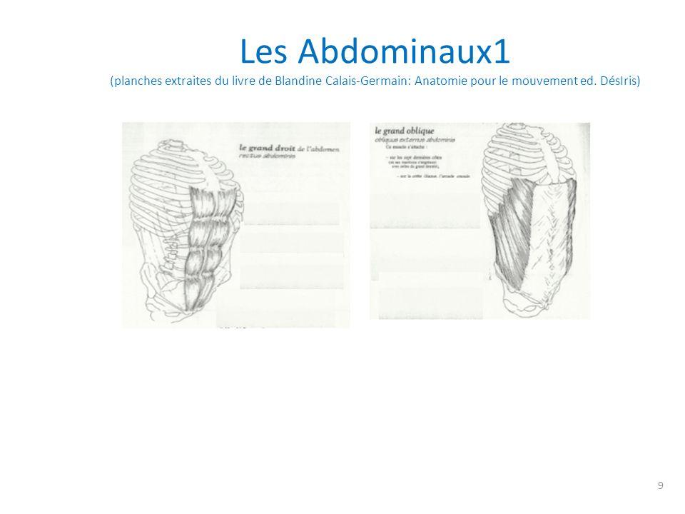 Les abdominaux2 (planches extraites du livre de Blandine Calais-Germain: Anatomie pour le mouvement ed.