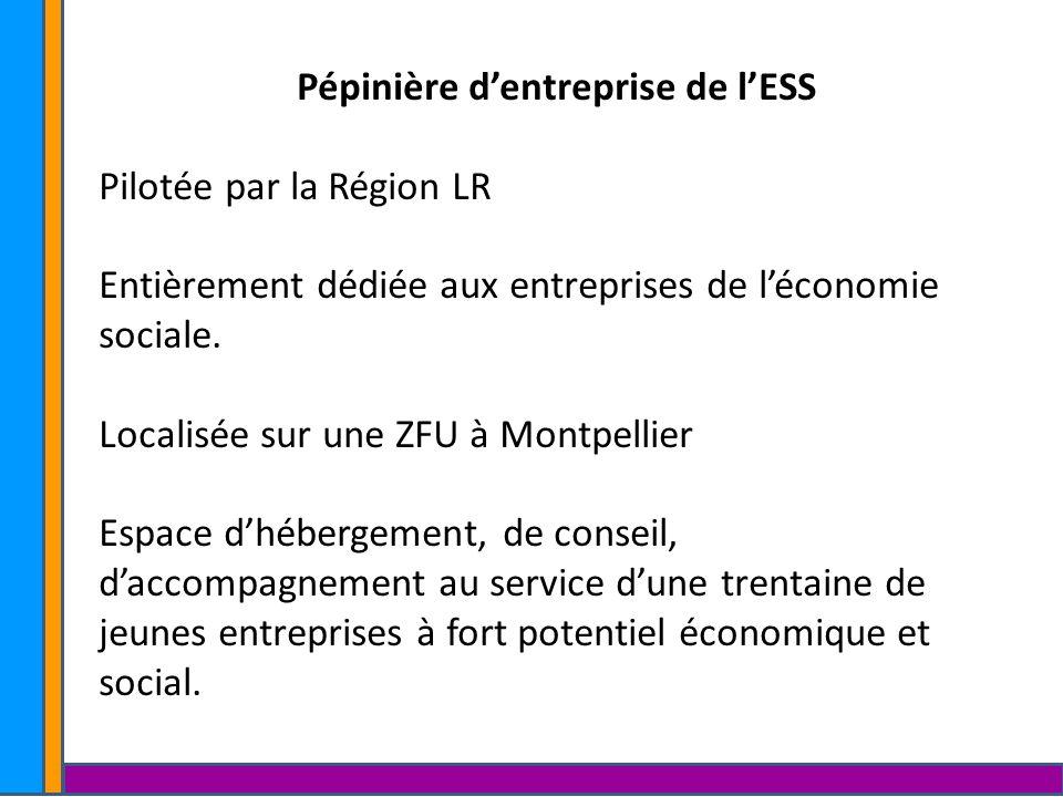 Pépinière dentreprise de lESS Pilotée par la Région LR Entièrement dédiée aux entreprises de léconomie sociale. Localisée sur une ZFU à Montpellier Es