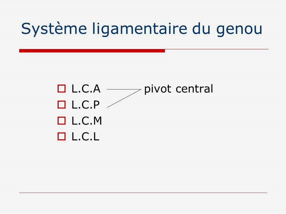Système ligamentaire du genou L.C.A pivot central L.C.P L.C.M L.C.L
