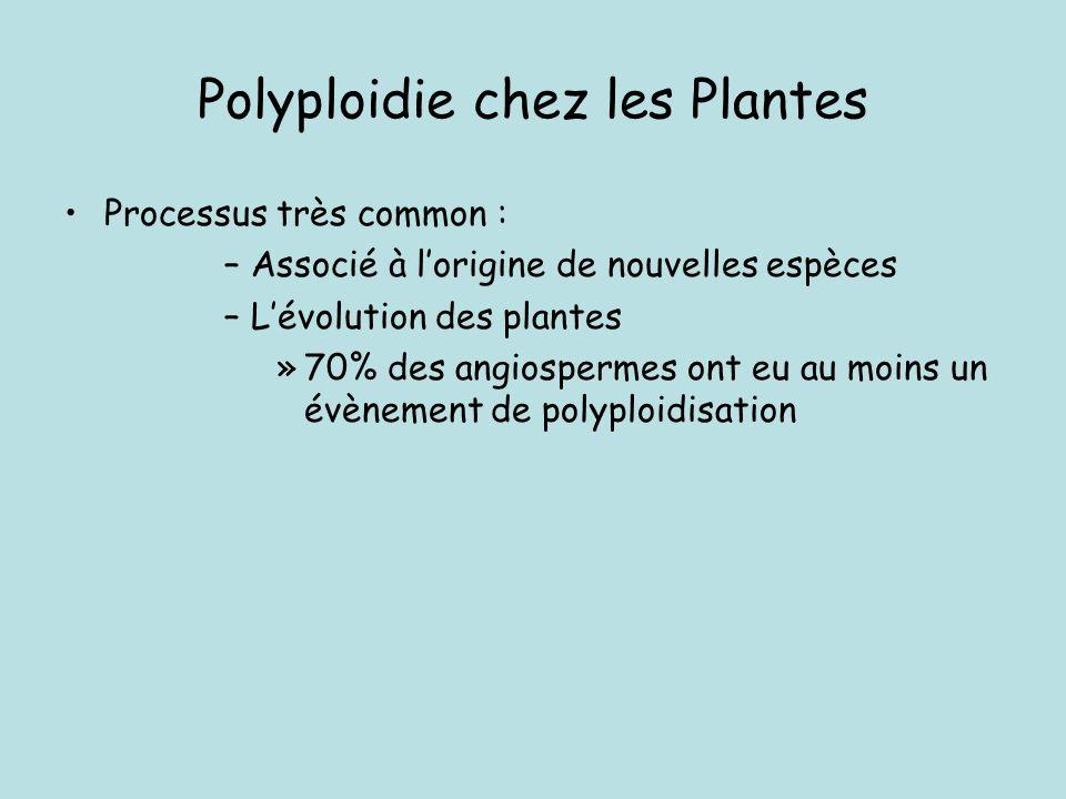 Une espèce/forme polyploïde contient plus de deux jeux complets de chromosomes Haploïde x=5 Diploïde 2x=10 Triploïde 3x=15 Tétraploïde 4x=20 Le nombre de chromosomes de lorganisme est un multiple (>2) du nombre chromosomique de base Pentaploide (5x) Hexaploide (6x) Heptaploide (7x) Octaploide (8x) ….